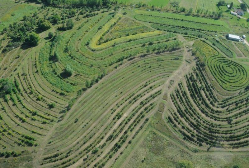 Luftbild einer Permakultur-Farm in den USA