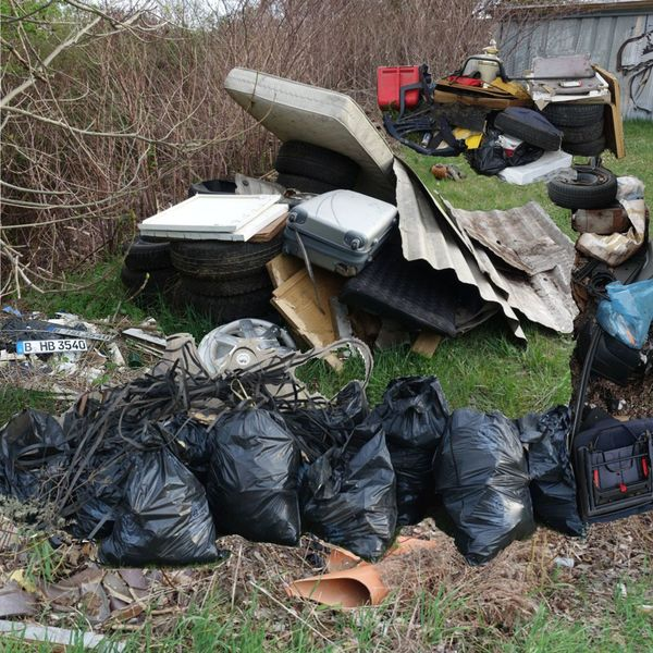 Auch zum Frühjahrsputz 2019 am Seehaus kamen wieder Unmengen an Müll zusammen.